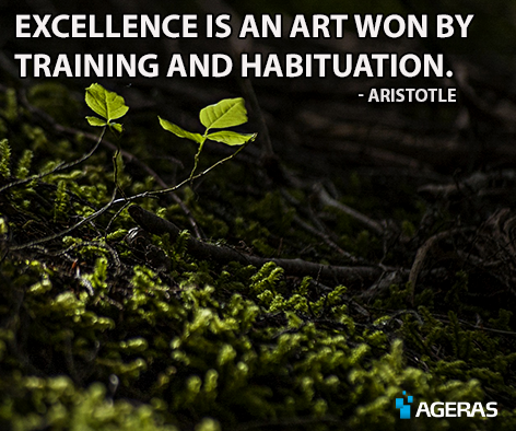 Citaat Aristoteles
