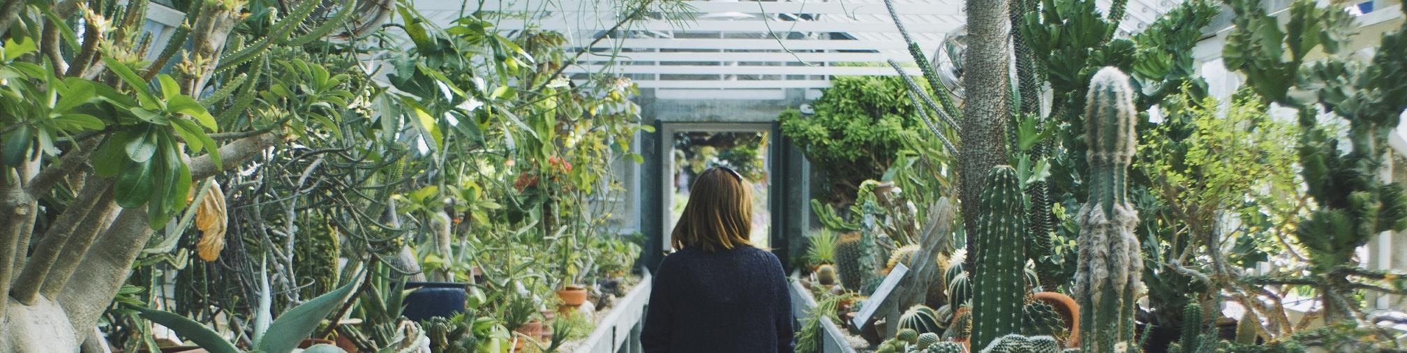 Vrouw in een serre vol cactussen en exotische planten