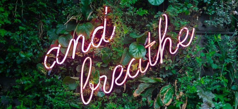 Neonletters And Breathe op plantenmuur