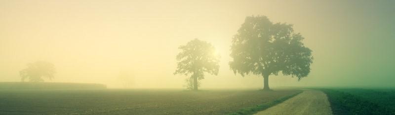 De zon komt op boven een mistige, groene vallei