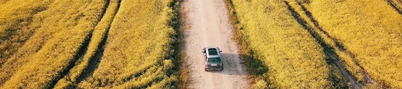 Auto die door een weiland rijdt