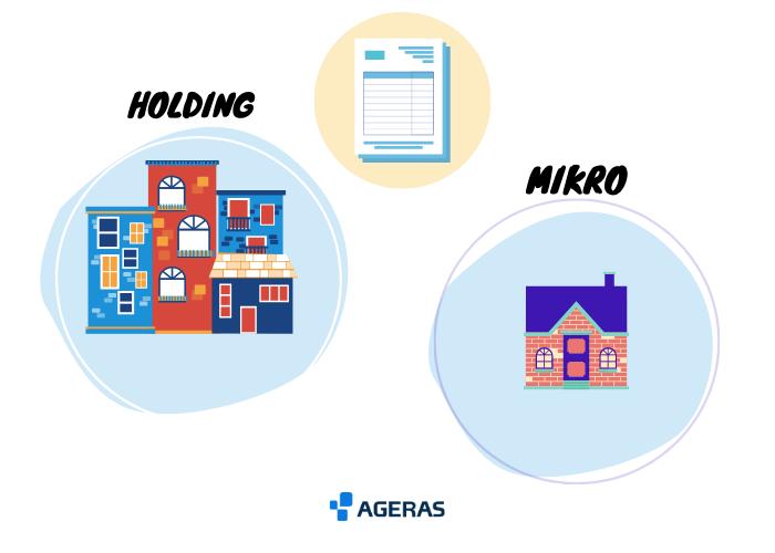 billede af en mikrovirksomheder og en holdingvirksomhed, som begge har ret til at få foretaget udvidet gennemgang og ikke fuld revision, his de overholder nogle bestemte regler.